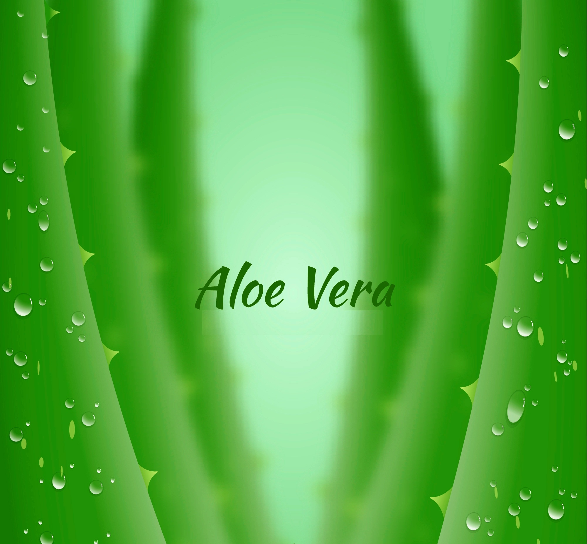 Aloe Vera Overview and its Amazing Benefits